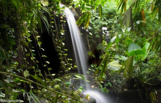 Tambopata trip planner