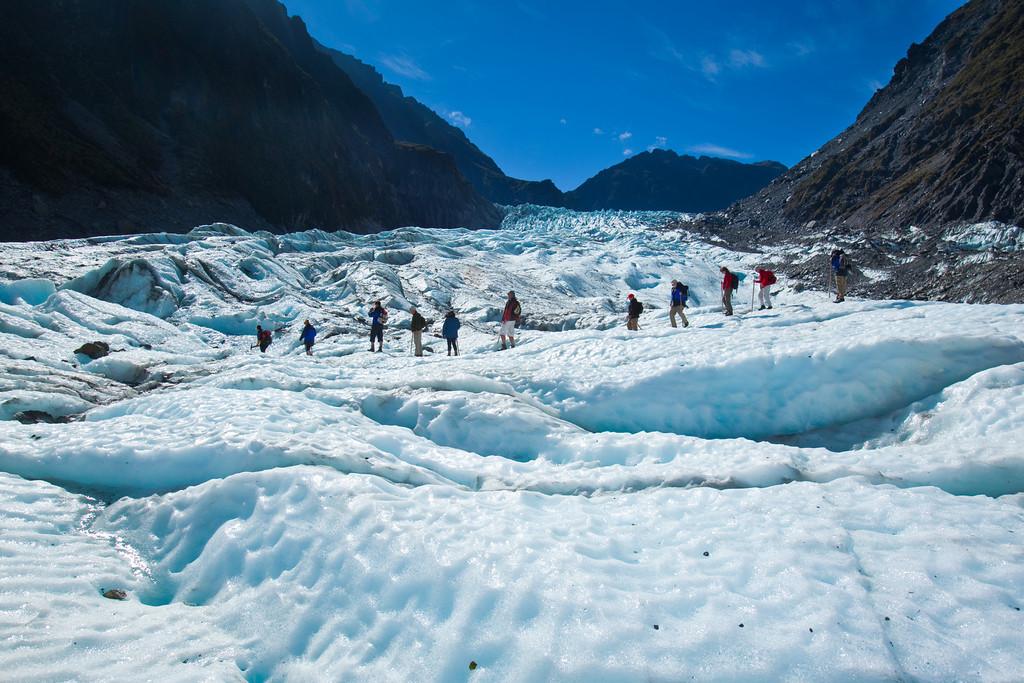 Fox Glacier trip planner